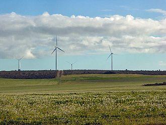 Walkaway, Western Australia - Wind turbines at the Walkaway Wind Farm