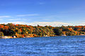 Gfp-wisconsin-lake-geneva-looking-at-the-autumn-forest.jpg