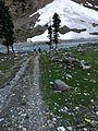 Glaciers in Kallam Valley KPK Pakistan.jpg