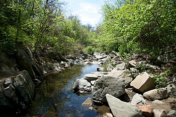 English: Stream to the Potomac River underneat...