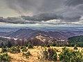 Golija - panoramio (16).jpg
