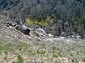Gorge - panoramio (8).jpg