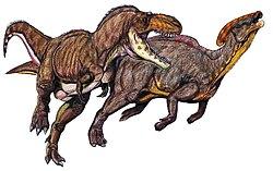 Parasaurolophus attaqué par un Tyrannosauridés,:l'Albertosaurus