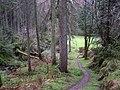 Gortin Glens Forest Park (21) - geograph.org.uk - 1712687.jpg
