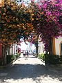 Gran Canaria 2015 (17547943211).jpg