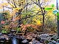 Grant's Creek (Tay River) at Allan's Mill, October, 2009 (5020607937).jpg