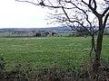 Grazing Land near Trysull, Staffordshire - geograph.org.uk - 365988.jpg