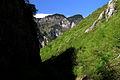 Green Rugova Gorge.jpg