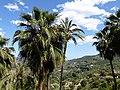 Guadalest - panoramio (6).jpg
