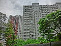 HK North Point Mid-levels Tai Hang 怡景道 Yee King Road Dragon Court back facade n Shing Loong Court May-2014 ZR2.JPG