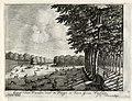 HUA-136014-Gezicht op de hertenkamp in de tuin van het huis Soestdijk te Baarn.jpg