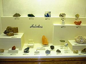 Halide minerals - Halide specimens at Museum of Geology, South Dakota