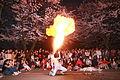 Hangang Yeouido Spring Flower Festival - 4402809591.jpg