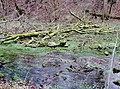Hasenbach - panoramio (1).jpg