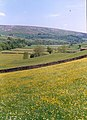 Hay meadow at Harkerside - geograph.org.uk - 339808.jpg