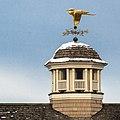 Heron Weather Vane (12101548836).jpg