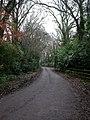 Hightown, Forest Lane - geograph.org.uk - 2214540.jpg