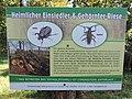 Hinweisschild für besondere Käfer - panoramio.jpg