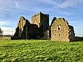 Hore Abbey, Caiseal, Éire - 46585669671.jpg