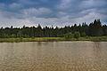 Horní rybník u obce Suchý, Velenov, okres Blansko.jpg