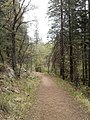 Horton Creek Trail, Payson, Arizona - panoramio (54).jpg