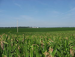Fields in southeastern Goshen Township