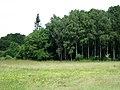 Huldenberg Reservaat, De dode Beemden - panoramio (3).jpg