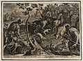 Hunting; dogs scare the deer into nets, whilst a hunter thro Wellcome V0049735.jpg