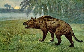 Lebendrekonstruktion von Hyaenodon (Gemälde von Heinrich Harder, entstanden um 1920)