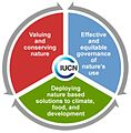IUCN programme 2013-2016.jpg