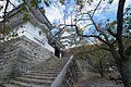 Iga Ueno Catsle , 伊賀上野城 - panoramio (6).jpg