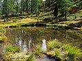 Il lago della capra - panoramio.jpg