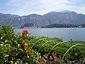 Il lago di Como da Villa Carlotta.jpg