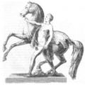 Illustrirte Zeitung (1843) 19 296 1 Rossbändiger.PNG