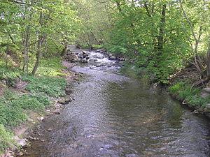 Ilm (Thuringia) - The Ilm near Langewiesen