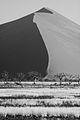 Infrared Dune (3688093618).jpg