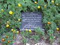 Ivano-Frankivsk UGA troopers mass grave-4.JPG