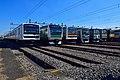 JR East Kawagoe depot Rolling Stock 20161015.jpg