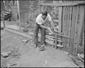 James Wheeler, miner repairs fence of his chicken yard. Raven Red Ash Coal Company, No. 2 Mine, Raven, Tazewell... - NARA - 541117.tif