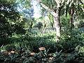 Jardines de la Cónsula 08.jpg