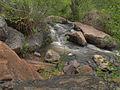 Jemez Creek (3679129091).jpg