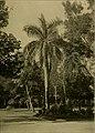 Journal of the Bombay Natural History Society (1913) (14773393495).jpg