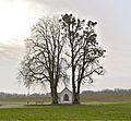 Kapellen-Linde+Kastanie Mitterkirchen.jpg