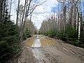 Katav-Ivanovsky District, Chelyabinsk Oblast, Russia - panoramio (6).jpg