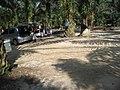 Kawasan kelapa Sawit di kaki Bukit Broga.JPG