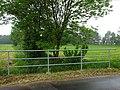 Kevelaer-Winnekendonk NSG Fleuthbenden PM18-06.jpg