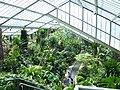 Kew Garden Visit (3656126789).jpg