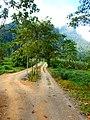 Khao Sok, 2014 December - panoramio (74).jpg