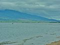 Kihei Maui, Hawaii - panoramio.jpg