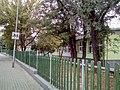 Kisela Voda, Skopje, Macedonia (FYROM) - panoramio (6).jpg